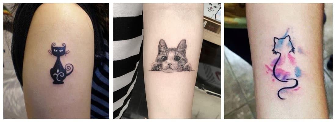Tatuajes De Gatos Originales Miau Mini Tatuajes